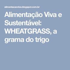 Alimentação Viva e Sustentável: WHEATGRASS, a grama do trigo