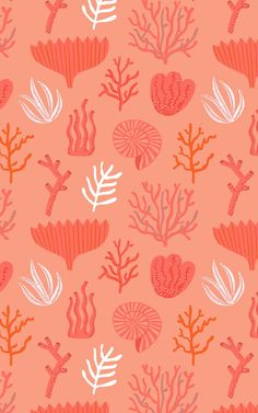 Welcome Pantone's colour of the year to your space with this vibrant living coral wallpaper, a cool reef pattern. Coral Wallpaper, Colorful Wallpaper, Pattern Wallpaper, Wallpaper Backgrounds, Iphone Wallpaper, Coral Pattern, Pattern Art, Coral Design, Photo Wall Collage