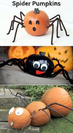 Just when you thought you'd seen every kind of pumpkin decor out there...we show you the spider! A cool way to stand out this Halloween.