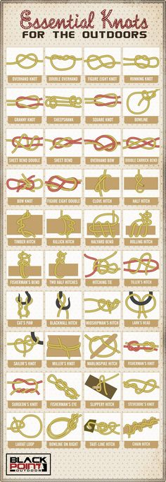 Need to tie a knot? There's an app for that! Wait, no! There's no app for that! But with this infographic you can tie all sorts of specialty knots with no trouble at all.Via Black Point Outdoors.More great Outdoors knowledge.Photo credit: Canva