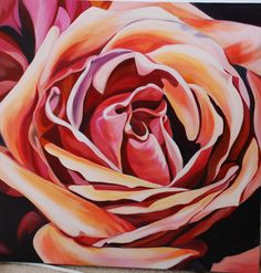 Caramel Rose, 50cm square, $250 SOLD