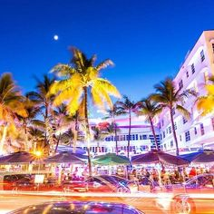 The 20 best things to do in Miami that everyone needs to experience Hang out in South Beach South Beach Clubs, South Beach Miami, Miami Florida, Florida Beaches, South Florida, Miami Beach Hotels, Places To Travel, Travel Destinations, Places