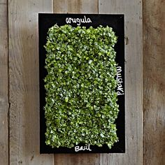 This year, give your green-loving friend some wall art. Edible wall-art, that is. This microgreen planter adds a nice touch to the walls and to whatever's cooking in the kitchen!