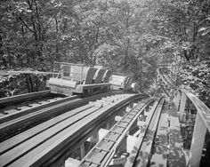 Glen Echo Roller Coaster Tracks & Car 8x10 Reprint Of Old Photo