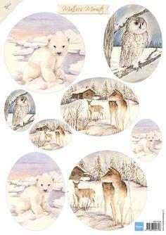 Картинки по запросу winter nool vk9547