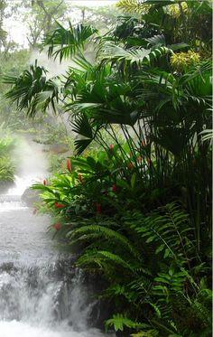 rainforest waterfall of naturalness