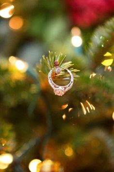 Ring on a tree lights tree ring engagement holiday christmas