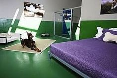 Pooch Hotel: Luxury Hotel is a special for a dogs Dog Friendly Hotels, Shelter Design, Dog Cafe, Pet Hotel, Pet Resort, Pet Boarding, Pet Day, Dog Rooms, Cat Room