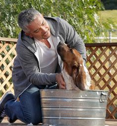 How Often to Bathe a Dog | Cesar Millan