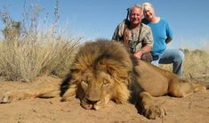 More canned hunting of tame animals. We're really scraping the bottom of the…