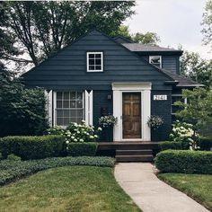 dark exterior, wood door, white trim, front yard landscape