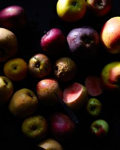 color palette fruit lighting jewel tones