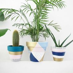 A lovely little hand painted plant pot in gold, spot, stripe and pastel design. … A lovely little hand painted. Painted Plant Pots, Painted Flower Pots, Pastel Designs, Decoration Plante, Creation Deco, Bedroom Plants, Cactus Y Suculentas, Terracotta Pots, Diy Flowers