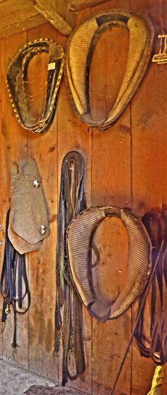 Hanging Horse Collars