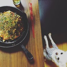 achapple_昨日はスキレットで  お好み焼き  真上からの写真なので  鰹節揺らめいてるのが  わからずですねσ^_^; 毎回こむぎハンターに  ご飯狙われてます  #お好み焼き#夕ご飯#料理#献立#ご飯#暮らし#くらし#日々#男前料理#ビール#お家ごはん#おうちごはん#スキレット#暮らし#vscofood#foodvsco#food#instagood#instafood#viqli#japanesefood#foodphoto#instacook#foodpic