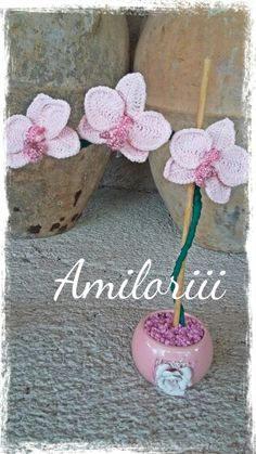 Amiloriii