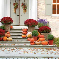 For a 5-minute fix, pile on the pumpkins, and nestle potted mums right into decorative containers. The mums will also pair well with boxwood, salvias, and ornamental cabbage and kale.