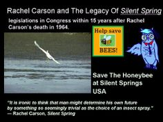 22 Best Silent Spring Images Rachel Carson Women In