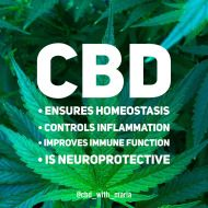 What is CBD? CBD is short for Cannabidiol, one of the many cannabinoids present in the Cannabis plant. Unlike THC, CBD has no known psychoactive properties, and will not get you 'high'. What CBD do… Other Info Explore our site. Eczema Causes, Cannabis Plant, Shelf Life, Find Someone Who, Carrier Oils, Good To Know, The Cure, Healing, Herbs