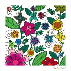 Itunesapple Us App Colorfy