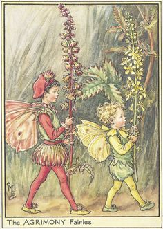 Fairies Illustration by Cicely Mary Barker