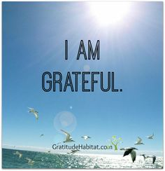 Take a moment.  Look around...What are you grateful for? Visit us at: www.GratitudeHabitat.com #grateful #gratitude #Gratitude Habitat