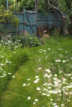 Fancy a mini meadow garden? I have several beautiful strips of wildf - Fancy a mini meadow garden? I have several beautiful stripes wildf … – garden design - Prairie Garden, Meadow Garden, Amazing Gardens, Beautiful Gardens, Cottage Garden Design, Garden Design Ideas, Garden Ideas Uk, Garden Design London, Garden Bed Layout