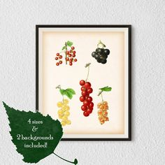 Kitchen art Berry print Kitchen wall art от RestoredBotanicalArt