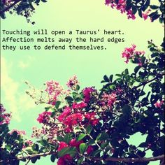 #taurus - It depends. I'm more like 'Who are you and why are you touching me?' #intp