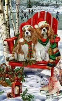 ♥ Cavaliers Christmas 2013