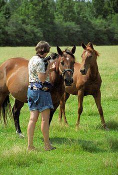 toni with horses