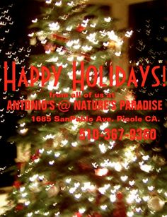 Antonio's @ Nature's Paradise Day Spa & Salon in Pinole, CA #Happy #Holidays From #All of #Us at #Antonio's@Nature's Paradise. #Transform your #look for The #Holiday #Season  and the #New #Year. #Give  a #call