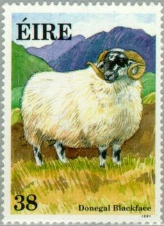 1991: Donegal Blackface (אירלנד) (Irish Sheep) Mi:IE 767,Sn:IE 842,Yt:IE 770,Sg:IE 817,AFA:IE 772