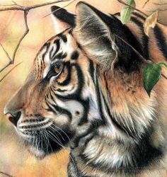 Fantasy Landscape Tiger | Wildlife Art Gallery