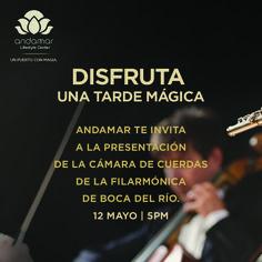 Disfruta una tarde mágica con la cámara de cuerdas de la FIlarmónica de Boca Del Río  12 de mayo a las 5:00 p.m.