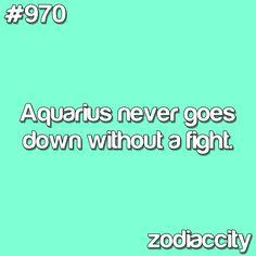 Daily updated fun facts on the zodiac signs. Aquarius Traits, Aquarius Quotes, Aquarius Woman, Age Of Aquarius, Capricorn And Aquarius, Zodiac Signs Aquarius, Zodiac Quotes, Astrology Signs, Zodiac Facts