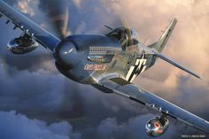 Mustang - by John Dibbs Ww2 Fighter Planes, Fighter Aircraft, Fighter Jets, Us Military Aircraft, Ww2 Aircraft, Old Planes, Airplane Art, P51 Mustang, Nose Art
