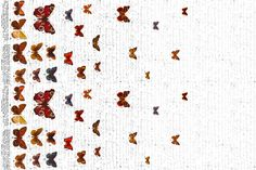 Butterfly Border White Background fabric by zyndie_girl on Spoonflower - custom fabric