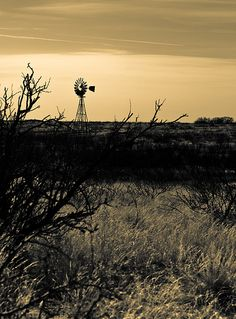 Odessa, Texas where I was raised. Odessa Texas, Old Windmills, Loving Texas, Texas History, West Texas, Texas Homes, Florida Beaches, Adventure Is Out There, Abandoned Places