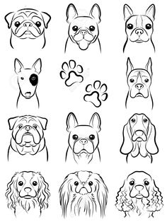 Drawing Doodles Sketches Illustration of Dog / Line drawing vector art, clipart and stock vectors. Image - - Millions of Creative Stock Photos, Vectors, Videos and Music Files For Your Inspiration and Projects. Cartoon Drawings, Easy Drawings, Animal Drawings, Drawings Of Dogs, Sketches Of Dogs, Bulldogge Tattoo, Dog Line Drawing, Dog Line Art, Dog Drawing Simple