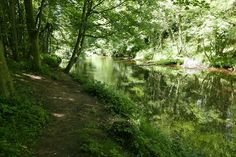 Beautiful Dalkeith Country Park just outside Edinburgh is the perfect destination for a family day out!
