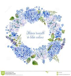 round-frame-blue-hydrangea-other-flowers-watercolor-wreath-can-be-used-as-greeting-card-background-valentine-s-day-50472594.jpg (1300×1390)
