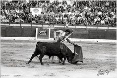 Novillada del 1 de mayo de 1975 en Murcia