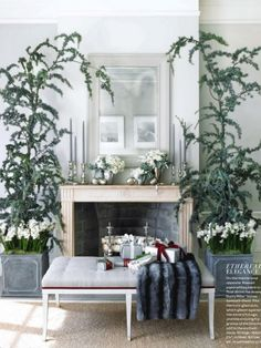 Love the way the paper white bulbs have been incorporated into this pretty Christmas space...