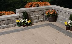 With more than 60 styles and colors to choose from, you'll find just the right Oaks paver for your patio, pool deck, rooftop patio or walkway. Rooftop Patio, Paving Stones, Walkway, Brick, Landscape, Outdoor Decor, Products, Sidewalk, Cobblestone Pavers
