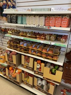 This is a great time to check out the *NEW* Dollar Tree Fall Decorations 2020 – Lizzy Dollar Tree Fall, Flooring Sale, Target Dollar Spot, Velvet Pumpkins, Welcome Fall, Halloween Goodies, Fall Decorations, Autumn Trees, Autumn Home