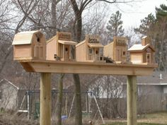 Bird houses COOL IDEA Maybe My Fence Line will work for this