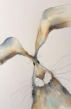 Thank you for viewing my hare painting! This is an original watercolour painting. - Thank you for viewing my hare painting! This is an original watercolour painting with pen detailing - Animal Paintings, Animal Drawings, Art Drawings, Easter Drawings, Watercolor Animals, Watercolor Art, Watercolour Paintings, Painting Illustrations, Original Paintings