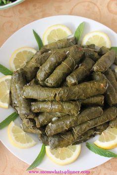 One of my favorite Arabic dishes! Dolma, Stuffed Grape Leaves