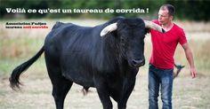 "Association anti corrida Fadjen  <iframe src=""https://www.facebook.com/plugins/video.php?href=https%3A%2F%2Fwww.facebook.com%2Fgarytvcom%2Fvideos%2F1336622659726312%2F&show_text=0&width=560"" width=""560"" height=""315"" style=""border:none;overflow:hidden"" scrolling=""no"" frameborder=""0"" allowTransparency=""true"" allowFullScreen=""true""></iframe>"